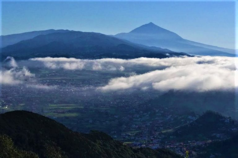 The view of Teide from the Anaga forrest